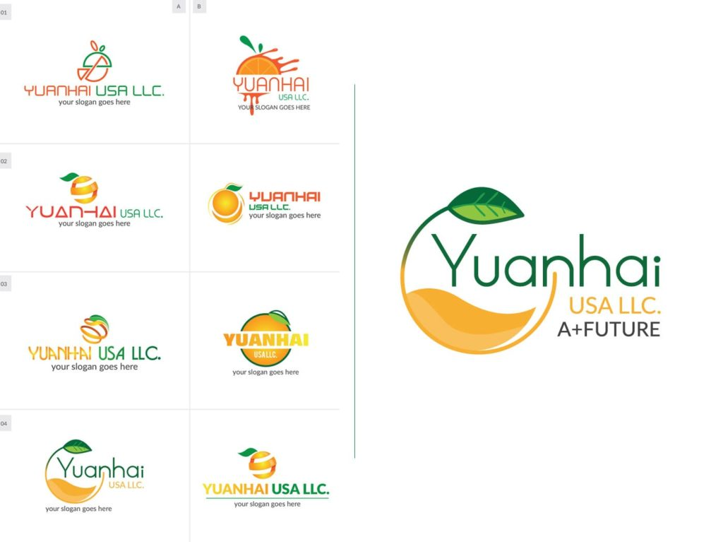 Logo Design with Different Options